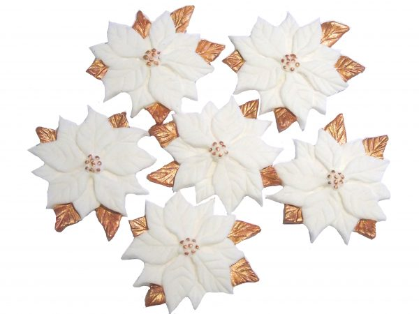Large white-pintsettiers cake toppers